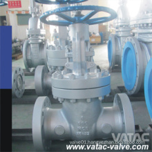 Vatac Wcb/Ss304/Ss316cast Steel Gate Valve with RF/Rtj