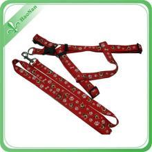 Custom Colorful Printed Nylon Dog Leash