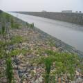 La Chine 9 ans fabricant de matelas de Gabion / Reno