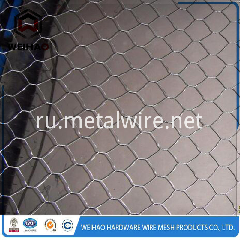 hexagonal wire netting 6