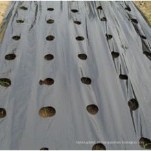 Película plástica preta perfurada do Mulch da agricultura do PE para a estufa