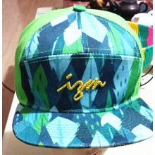 Fashion Embroidery Cotton Twill Sport Golf Baseball Caps