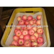 138-198 18kg лучший yantai Fuji Apple