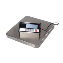 Balance Scale and Shipping Scale