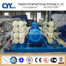 CNG31 Skid-Mounted Lcng CNG LNG Kombi-Tankstelle