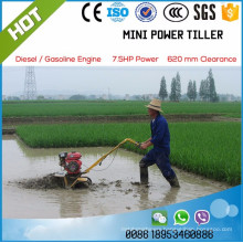 Gasoline engine double rows paddy weeder
