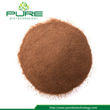 Venta al por mayor Black Maca Extract / Maca Extract Powder