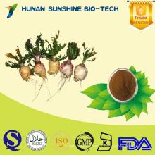 Usado en industria de productos de salud // Extracto de raíz de maca para equilibrar la secreción de hormona humana