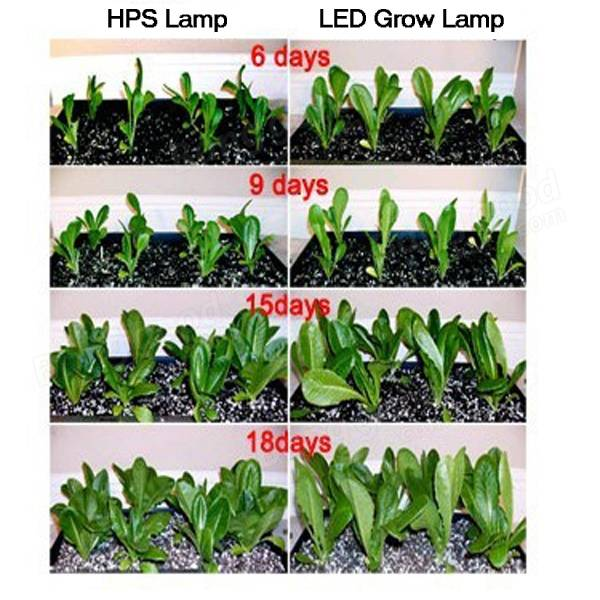 LED Grow Strip Light