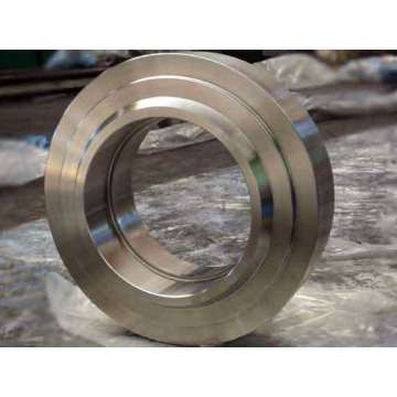 Sectie Mill Roll Ring