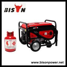 BISON (CHINA) Gasolina Biogas de doble uso Biogas Power Generator