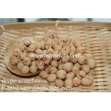Bola de sementes de girassol de lula