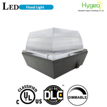 Yüksek Performanslı DLC 40W LED Canopy Light