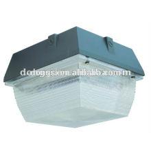 Ceiling light fixture garge lamp