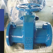 Cast Steel Rubber Sleeve RF Flanged Pinch Valve