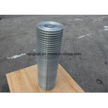 Mesh électro-galvanisé soudé (XA-400)
