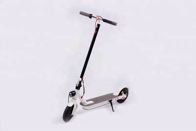 Skateboard Scooter Electric