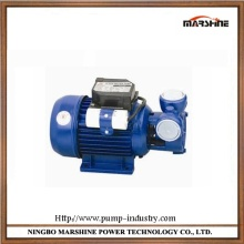 Horizontal vortex cast aluminuml self priming water pump