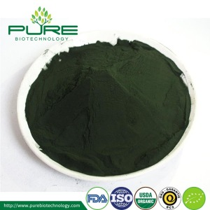 NOP Certified Organic Green Spirulina Powder