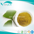 Ginkgo Biloba Extract USP and EP grade
