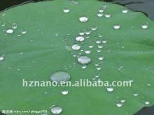 Waterproofing Coating : Self Cleaning Hydrophobic Surface Coatings