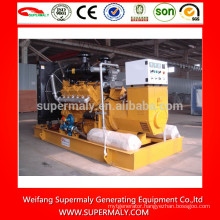 10kw -1000kw biogas generator with competitive price