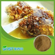 Super quality propolis liquid extract with competitive price