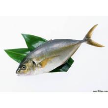 (Colágeno de pescado péptido en polvo) - Cosméticos / Alimentos / Medicina Grado pescado colágeno péptido en polvo