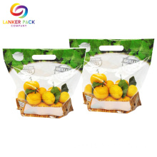 OEM/ODM for Snack Packaging Bag Flexible Plastic Clear Stand Up Pouch For Fruit supply to France Exporter