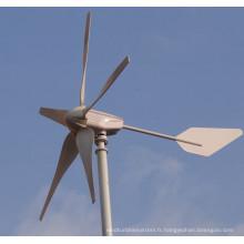 Système d'alimentation hybride solaire éolien (MAX 1200W)