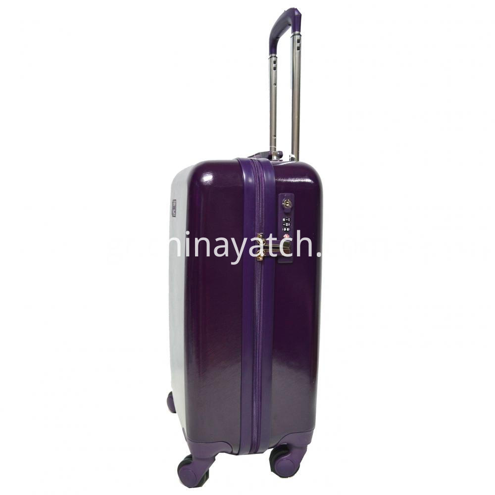 Attractive Grain ABS Luggage Case