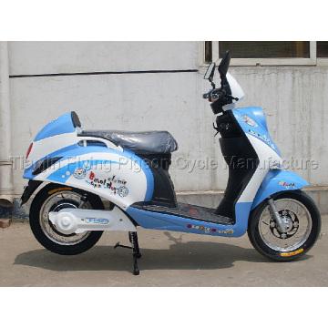 E-Bike (E-008)