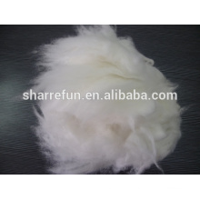 Angora fiber price,pure angora rabbit hair white 14.515.0mic/32mm