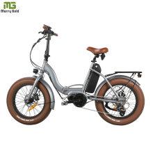 Factory Supply Folding E Bike Electric Bicycle Fat Tire E Bike EU Standard