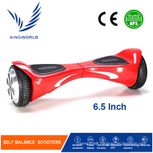 Outdoor Electric Self Balancing Scooter