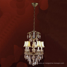 Luminária pendente de arte / para uso profissional / lustre de iluminação / abajur