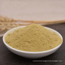 Hot Sale China New Crop Dehydrated Dried Green Bell Pepper Powder