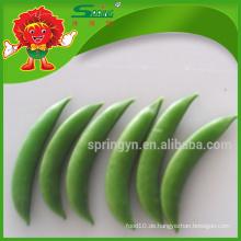 Chinesische Sahne Erbsen grüne Erbsen Bio-Gemüse mit Vitamin D