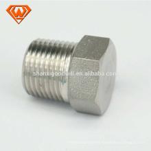 encaixe de tubulação do ss de aço inoxidável Hex cabeça Plug