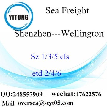 Shenzhen Port LCL Consolidation naar Wellington
