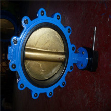 Lug Type Butterfly Valves, Contric Disc