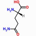 Питания аминокислоты L-аланил-L-Глутамин