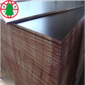 18mm brown film faced shuttering plywood for construction