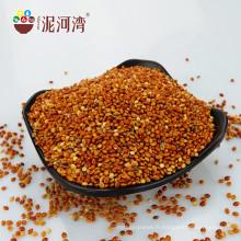 Millet de maïs à balai rouge Chine