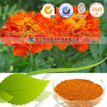 Factory Price Additive Marigold Extract Lutein Powder