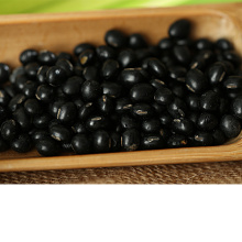 Nature Dried Black Kidney Beans Soya Bean