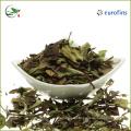 Organic Best White Tea Brands White Tea