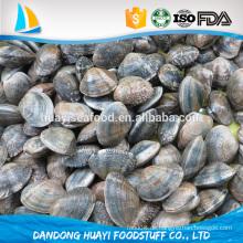 Fettarme, proteinreiche Meeresfrüchte-Auswahl gefrorene Baby-Muschel