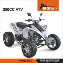 250cc гонки квад Atv 250 ЕЭС