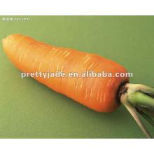 Chinesisch fesh Karotte